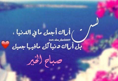 بالصور صباح حبيبي , صباح الحب ياعمرى 4756 9 480x330