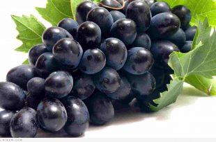صورة فوائد العنب الاحمر , اهمية العنب الاحمر