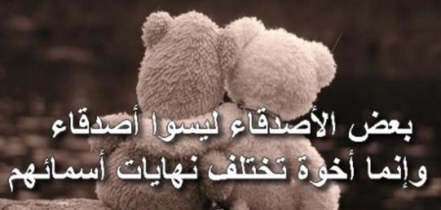 بالصور كلمات معبرة عن الصداقة , الصديق الوفى خير اخ 4821 3