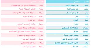 بالصور معاني اسماء بنات , اجمل اسم طفلة 1238 3 310x165