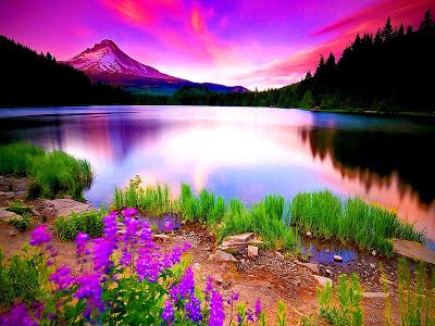 صورة اجمل الصور الطبيعية في العالم , اجمل المزارات الطبيعية 1301 5
