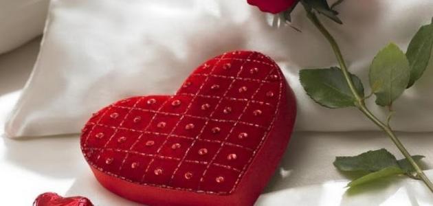 صورة تعبير عن الحب , اجمل المفاهيم عن الحب