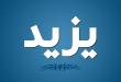 بالصور معنى اسم يزيد , اسم ولد ديني 1555 1 110x75