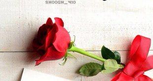 صورة رسائل حب صباحية , مسجات حب فى الصباح