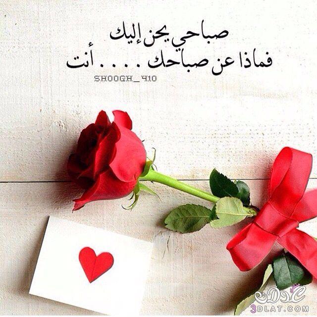 صور رسائل حب صباحية , مسجات حب فى الصباح
