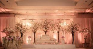 صورة كوشات اعراس , اروع اشكال لكوشه الاعراس