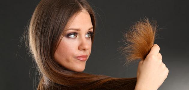 صورة علاج تقصف الشعر , ماهو العلاج المناسب لمشاكل تقصف الشعر