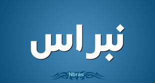 معنى نبراس , معاني المعجم للغة العربية