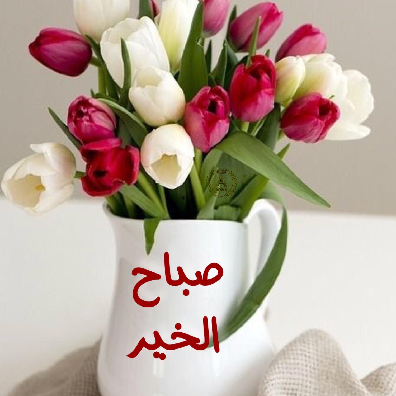 بالصور صور صباح العسل , اجمل رمزيات صباح الخير 3481 2