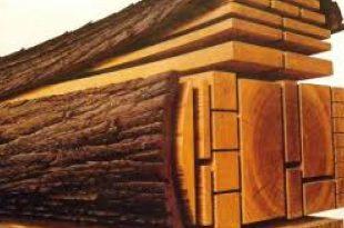 صورة انواع الخشب , ما هي انواع الخشب واستخداماته