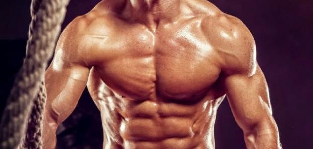 صورة جسم الرجل , الجسم المثالي للرجل