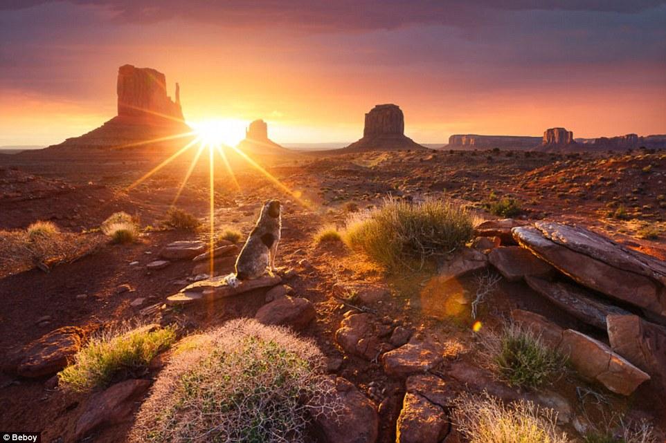 صور اجمل الصور في العالم , افضل واروع الرمزيات فى العالم