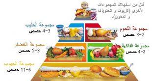 بالصور نظام غذائي لزيادة الوزن , طرق صحيه لزيادة الوزن بشكل طبيعى 3986 2 310x165