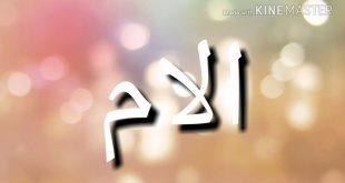 بالصور احلى كلام عن الام , الام رضاها من رضى الله سبحانه وتعالى 4121 11 310x165