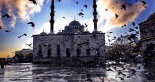 معلومات عن تركيا , بعض الاشياء الموجوده فى تركيا والمشهوره بها