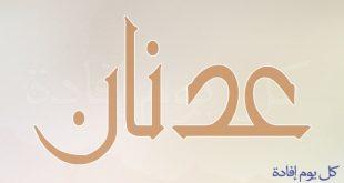 بالصور معنى اسم عدنان , تعرف على معنى اسم عدنان و صفاته 4228 3 310x165