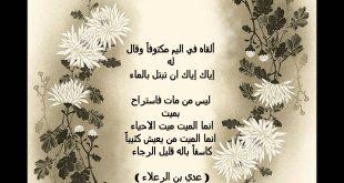 اجمل ابيات الغزل , اجمل الغزل فى الاسلام