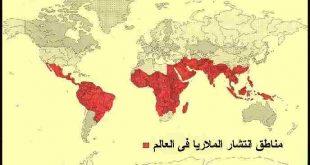 بالصور مرض الملاريا , ما هى اعراض مرض الملاريا واضراره 60 3 310x165