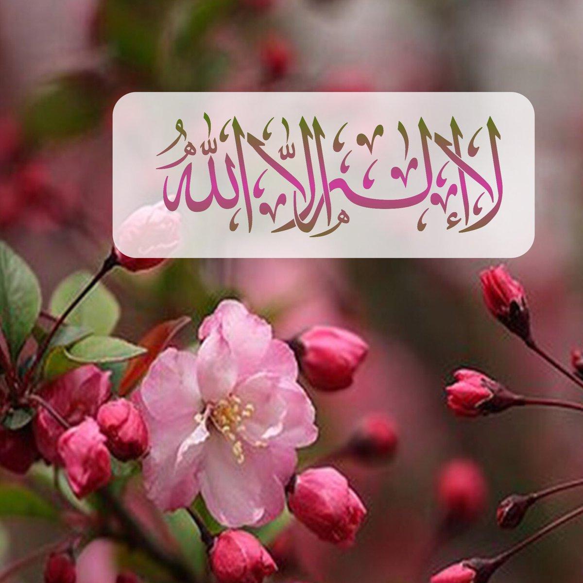 صورة صور لا اله الا الله , لا اله الا الله محمد رسول الله