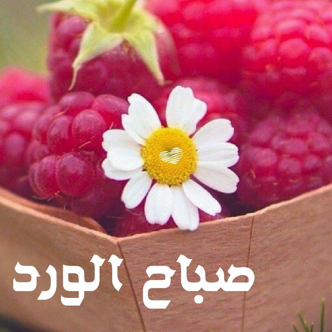 بالصور رسائل صباح الخير , صور مكتوب عليها صباح الخير 3452 5