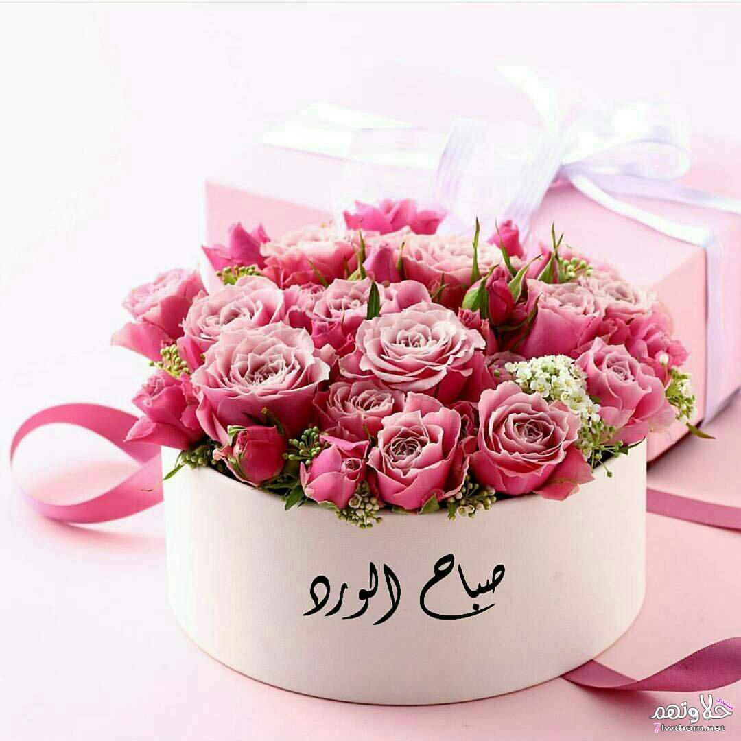 بالصور صور صباح العسل , اجمل رمزيات صباح الخير 3481 1