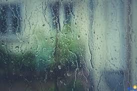 بالصور صور عن المطر , اجمل صور طبيعيه للمطر 214 2
