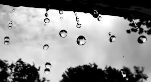 بالصور صور عن المطر , اجمل صور طبيعيه للمطر 214 8