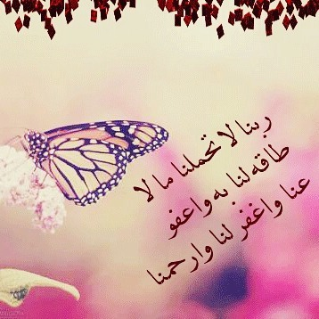 بالصور اجمل الصور الاسلامية المعبرة , اروع خلفيات اسلاميه 4691 10
