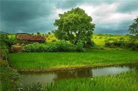 بالصور اجمل صور الطبيعة , خلفيات رائعه للطبيعه 4744 11