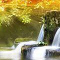 نتيجة بحث الصور عن اجمل صور الطبيعة