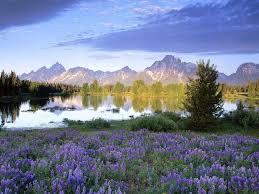 بالصور اجمل صور الطبيعة , خلفيات رائعه للطبيعه 4744 2