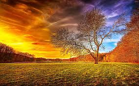 بالصور اجمل صور الطبيعة , خلفيات رائعه للطبيعه 4744 8