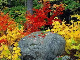 بالصور اجمل صور الطبيعة , خلفيات رائعه للطبيعه 4744 9