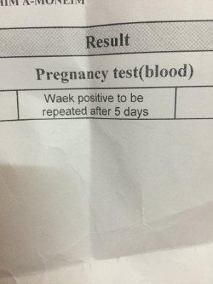 صورة فحص الحمل بالدم , معرفه الحمل بواسطه تحليل الدم