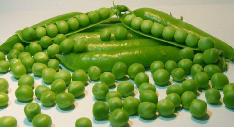 صور تفسير حلم البازلاء الخضراء , احلي تفسير لحلم البازلاء الخضراء