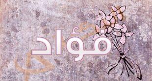 صور ما معنى اسم فؤاد , تعرف علي معني اسم فؤاد