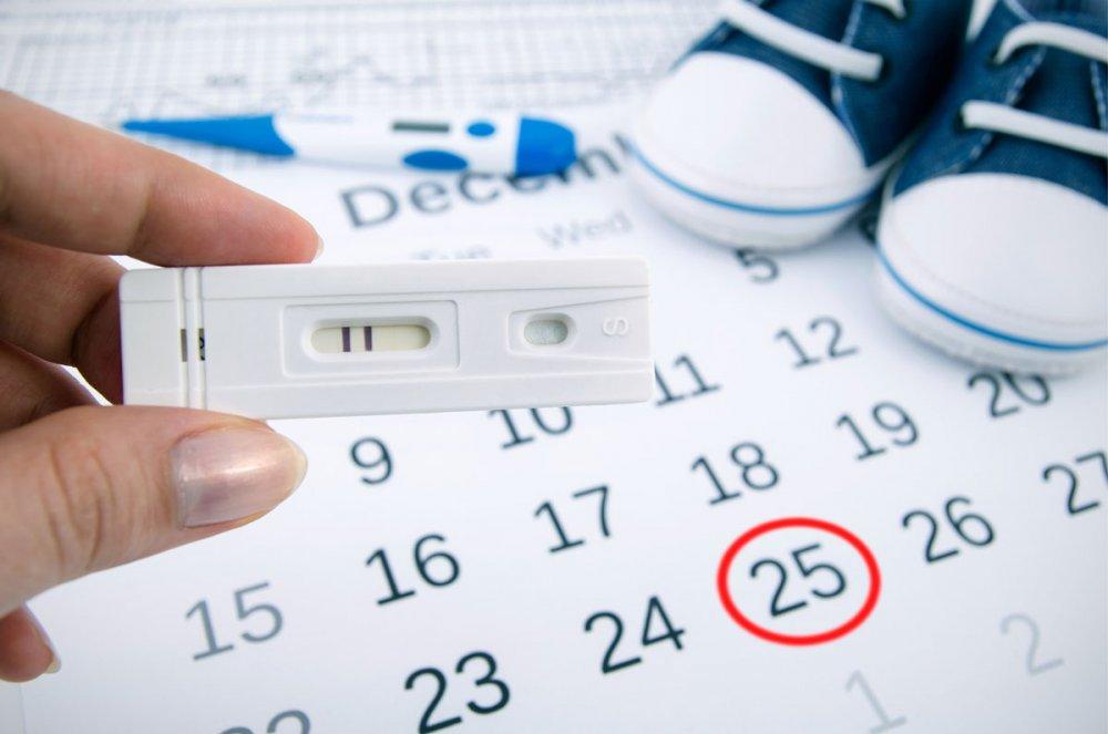 بالصور حاسبة الحمل بالاشهر , كيف تتم حاسبة اشهر الحمل ومعرفة متى تم الحمل 5103 8