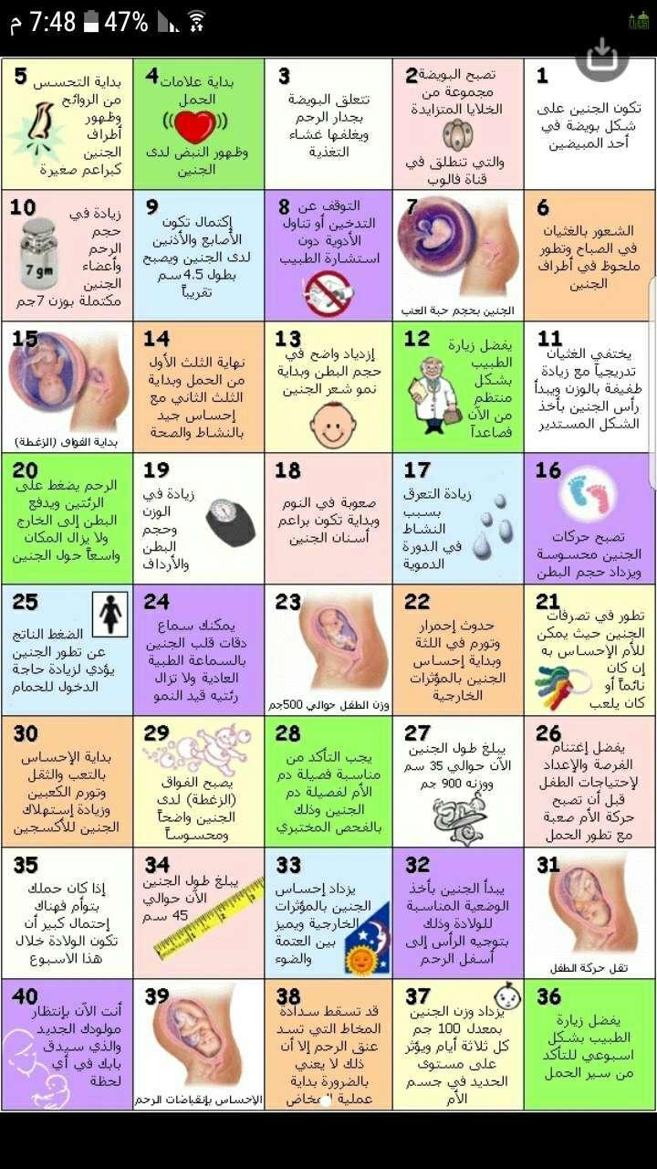 بالصور حاسبة الحمل بالاشهر , كيف تتم حاسبة اشهر الحمل ومعرفة متى تم الحمل
