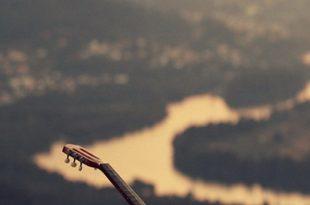 صور صورمنوعه جديده للواتس , اجددواجمل الصور المتنوعة للوتس