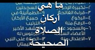 صورة ماهي اركان الصلاة , واجبات واركان الصلاة 2290 14 310x165
