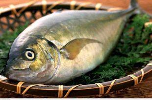 صورة فوائد السمك , فوائد السمك للاطفال للوقايه من الربو