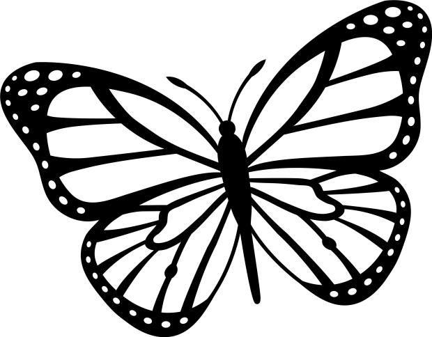 صورة صور فراشات للتلوين , اجمل صور الفراشات للتلوين