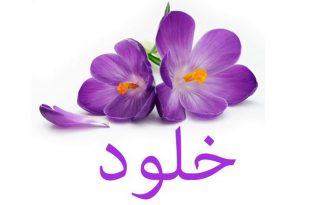 صور صور باسم خلود , معنى اسم خلود بالصور