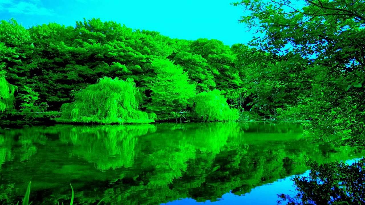 صورة صور عن الطبيعه , اجمل المناظر الطبيعيه بالصور