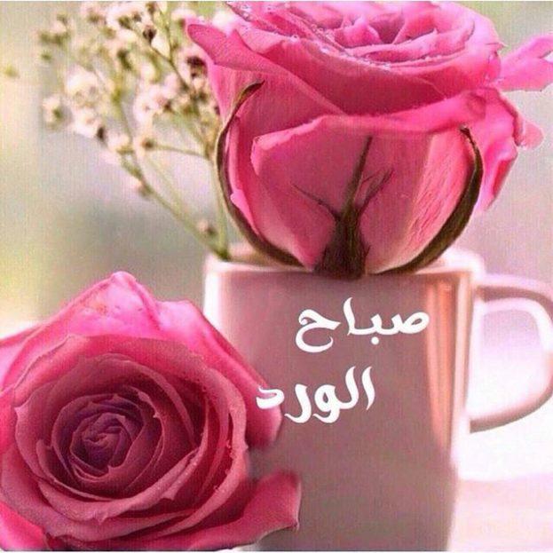 صورة احلى صور صباح الخير , اجمل الصور المكتوب عليها صباح الخير