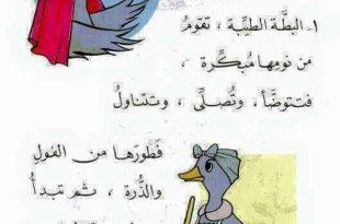 صورة قصص اطفال مصورة قصيرة جدا جدا , ماهي قصص الاطفال و مانعرف عنها