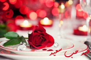 صورة صور ورد حلوه , الورد و جماله بالصور