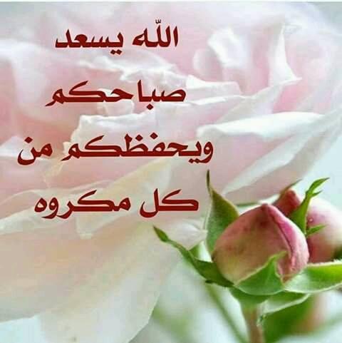 صورة صور صباح الورد , صباح الورد و جماله و روعته