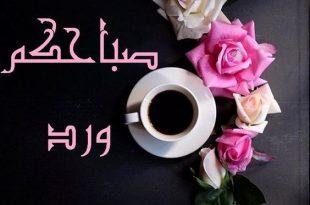 صور صور صباح الورد , صباح الورد و جماله و روعته