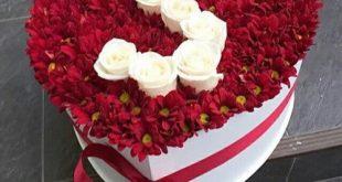 صورة صور ورد رومانسي , صور الورد و تعبيره عن الرومانسيه